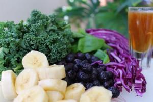 Gastric Sleeve Diet Foods