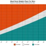 Ideal Body Mass Index Chart Information