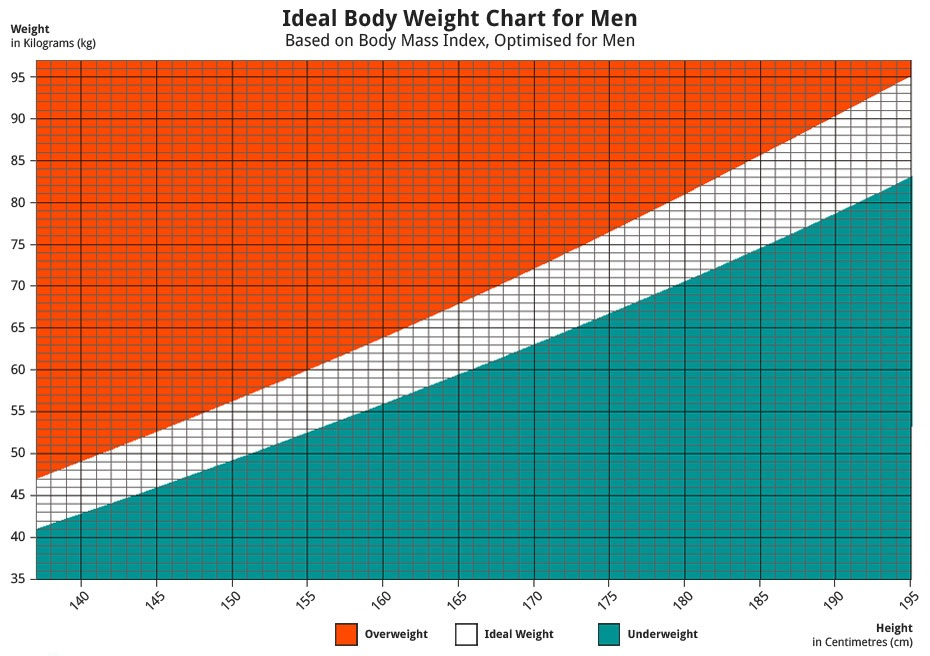 ideal body mass index chart