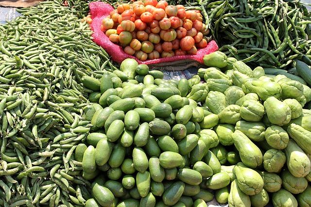 gastric sleeve pre op diet grocery